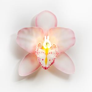 Fused and sculpted glass ornament of flower with neon