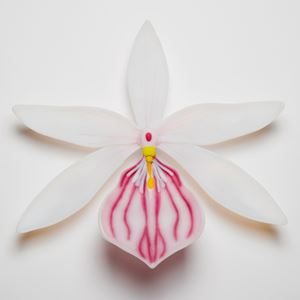glass artwork of white exotic flower in star shape