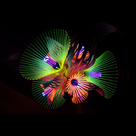 neon acrylic lighting installation formed of flower shaped blooms