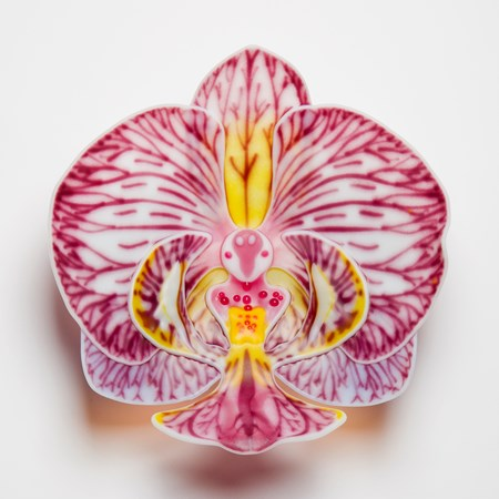 flower shaped hanging glass wall sculpture in crest shape with white background red purple and yellow detail