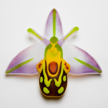 handmade fused glass sculpture of a bee nestling in an orchid in green orange white and purple